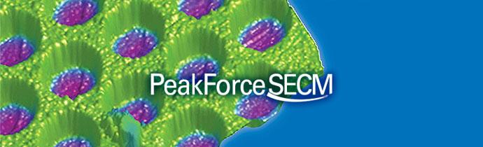 Bruker Peakforce SECM