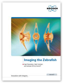 Bruker Zebrafish Micro-CT Brochure