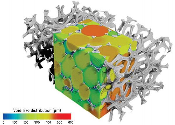Pore Size Distribution Analysis With Micro-CT