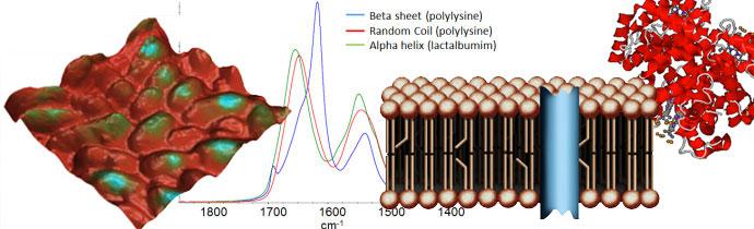 Nanoscale infrared spectroscopy webinar