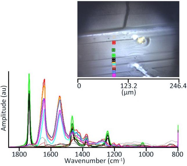 O-PTIR: Multilayer Polymer Film