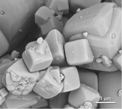 FEG-SEM Image of Zeolite